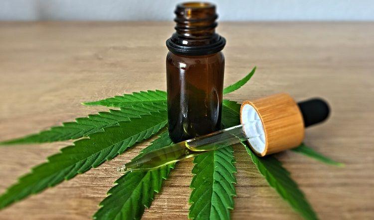 Jak užívat CBD olej: dávky pro 14 zdravotních problémů | Hemps.cz